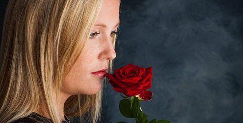 Valentinstag für Singles in Wien