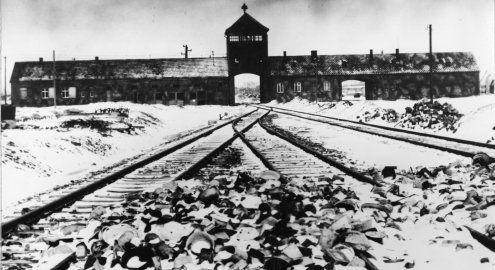 Todesfabrik der Nazis: Vor 70 Jahren wurde Auschwitz befreit