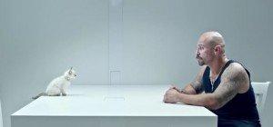 Anstarrwettbewerb: Verbrecher vs. Katze