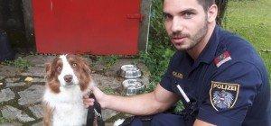 Entlaufener Hund in Liesing entdeckt und von Polizisten betreut