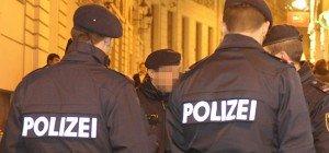Widerstand gegen die Staatsgewalt: Mehrere Festnahmen bei Polizeieinsätzen