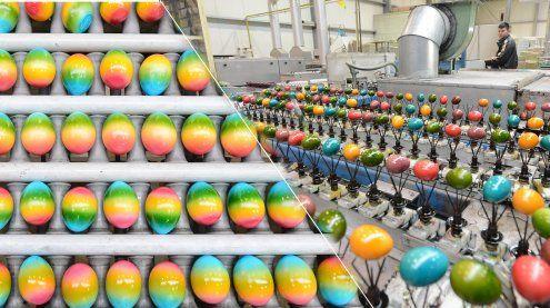 Eierfärbe-Betrieb: Hier werden 20 Millionen Eier für Ostern gefärbt