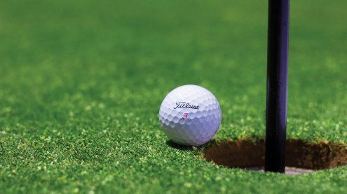Die Golfclubs im Großraum Wien