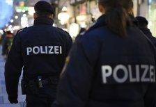 Vier Festnahmen und zwei verletzte Polizisten