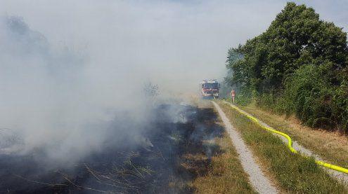 Betriebsstörung der Badner Bahn wegen Flurbrand in Wr. Neudorf