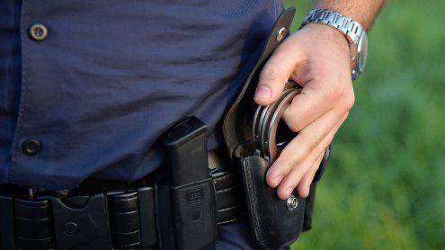 4 Einbrecher in 2 Bezirken gefasst