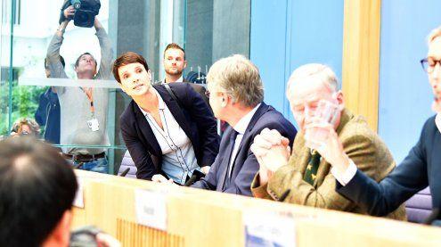 Eklat bei Pressekonferenz: AfD-Chefin Petry verlässt die Fraktion