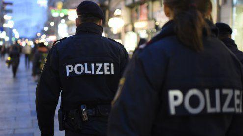 Wiener Polizei fasst monatelang flüchtigen Häftling nach Hinweis