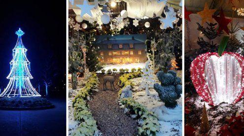 Besuch beim Weihnachtsmarkt in den Blumengärten Hirschstetten
