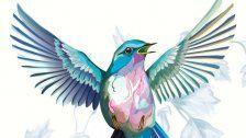 Blue Bird Festival im Porgy & Bess startet