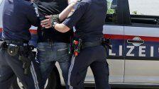 Festnahme in Wien nach zahlreichen Delikten
