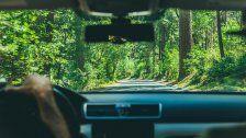 Offroad: Die neuesten Fahrzeugtrends
