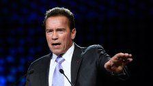 Schwarzenegger trifft auf Van der Bellen und Kurz