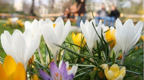 Der Frühling lässt auch noch in den Osterferien auf sich warten