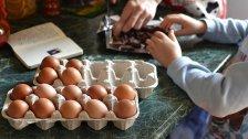 Bäckereien verarbeiten meist Eier aus Österreich