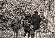 Buch mit familienfreundlichen Ausflugszielen rund um Wien