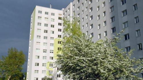 Vierjähriger nach Fenstersturz in Wien-Donaustadt verstorben