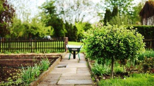 Bauordnungsnovelle 2018 bringt mehr Freiheiten für Kleingärtner
