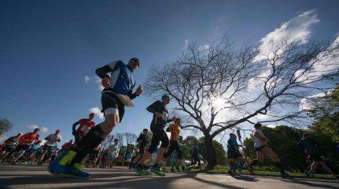 Vienna City Marathon: Große Pollen-Belastung für Allergiker